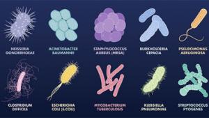 图示:部分常规细菌电子显微镜下构型;