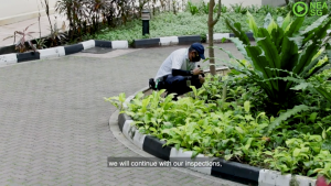 图示:NEA工作人员户外蚊虫侦测;
